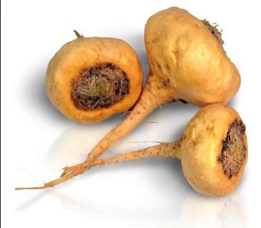 Maca herb For boosting Sperm Level