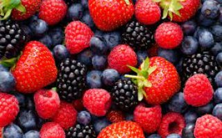 soft fruit for muscle growth